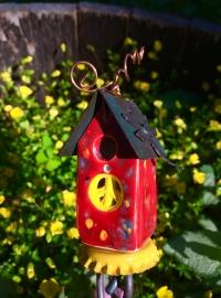 Red Geranium House