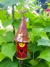 Geranium Colored House